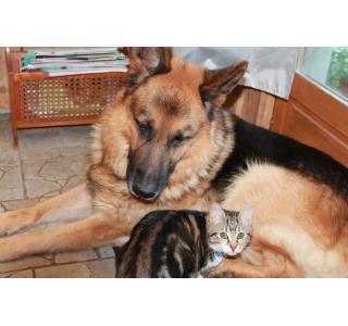 Ejeck avec son copain Maxou